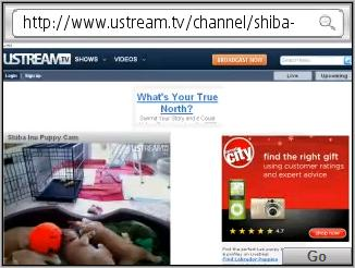 uStream video in Skyfire browser