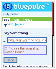 Bluepulse messaging interface
