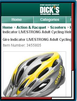 Dick's Sporting Goods Nobile Website 