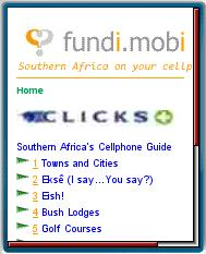Fundi.mobi South African Guide