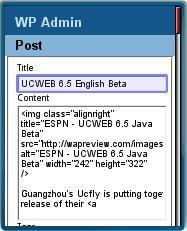 WPhone Edit Post Screen