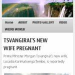 NewsDre-Zimbabwe - Symbian Anna Browser